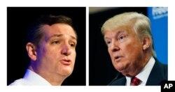 Ted Cruz (left), Donald Trump (right)
