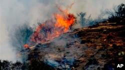 Лесной пожар в Калифорнии.