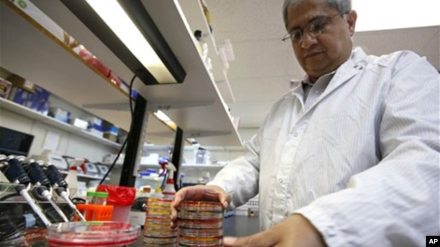 With the number of new E. coli cases appearing to slow down in Europe, the outbreak could soon end without health experts identifying the cause.