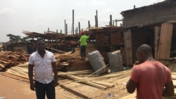 Le Cameroun veut rendre obligatoire l'utilisation du bois légal sur son marché