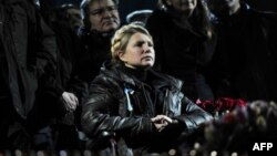 Ukrainian opposition leader Yulia Tymoshenko is seen in a wheelchair in Kyiv's Independence Square Feb. 22, 2014.