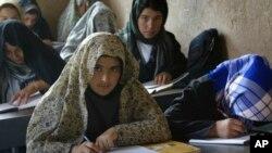 در حال حاضر ۶۰ تا ۶۵ درصد شهروندان افغان بیسواد اند