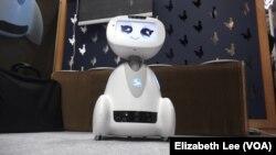 Badi - robot francuske kopanije Blue Frog Robotics