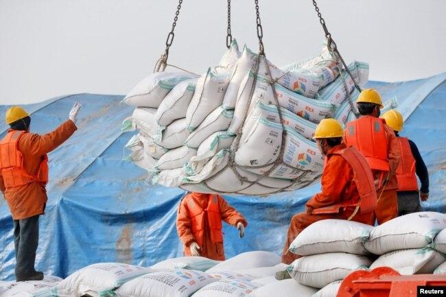 2018年3月22日,中國江蘇省南通港口工人裝卸進口的大豆產品。 中國4月3日宣布將對包括大豆在內的價值500億美元的美國商品加徵關稅,報復川普政府前一日公佈的對中國商品增收關稅清單。