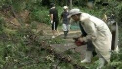 زیانی ئاکامی باوبۆران له ژاپـۆن