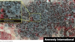Amnesty International released this satellite photo accusing Boko Haram of attacks in Baga.