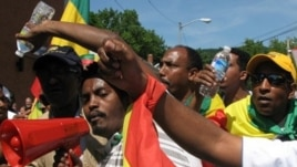 Ethiopian protesters called on President Obama to stop helping authoritarian leaders in Africa. (VOA / Nico Colombant)