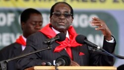 Zimbabwe President's Birthday Bash Preparations Stir Anger
