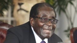Reporter Thomas Chiripasi on Zimbabweans Views on President Mugabe's Leadership