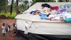 Recomeçou repatriamento de refugiados congoleses - 1:07