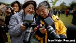 Royal aficionado Fumiko Shirataki shows a friend photographs she took of Japan's Emperor Akihito and Empress Michiko