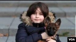 年齡未滿9歲的大學生、比利時神童洛朗·西蒙斯。