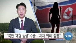 "[VOA 뉴스] ""북한 '대형 동상' 수출…'제재 회피' 정황"""