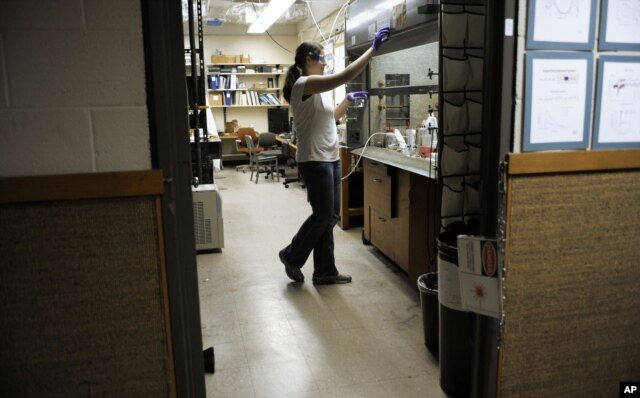 A September 19, 2011 photo shows a second-year chemistry doctoral student working at Kline Chemistry Laboratory at Yale University in New Haven, Connecticut.