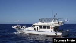 保钓人士在钓鱼岛近海捕鱼作业 (台湾行政院海岸巡防署秘书室提供)