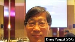 台灣政治大學國際關係研究中心主任丁樹藩(美國之音張永泰拍攝)