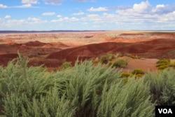 Arizona's Painted Desert National Park