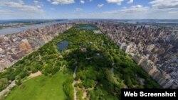 Nyu-Yorkun Mərkəzi Parkı