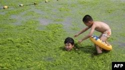 FILE - June 29, 2014 photo shows children playing with algae on a beach in Qingdao, east China's Shandong province.