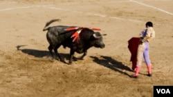 Las corridas de toros están autorizadas en todo el territorio continental de España. La única excepción son las Islas Canarias, donde fueron prohibidas en 1991.