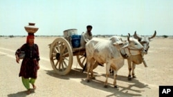 پانی کے بحران سے نمٹنے کے لیے موثرجدید آبی نظام وضع کرنے پر زور
