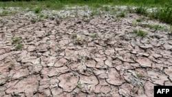 La vague de chaleur exceptionnelle en Europe entraine une sécheresse, ici de la rivière Po, en raison d'une sécheresse exceptionnelle alors que l'Italie est affectée par une vague de chaleur, le 23 juin 2017, près de Piacenza au nord de l'Italie.