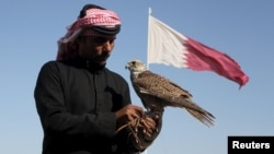 "FILE - A Qatari man prepares his falcon to participate in a contest during Qatar International Falcons and Hunting Festival at Sealine desert, Qatar, Jan. 29, 2016. The kidnapping of 26 Qataris in December 2015 in the Iraqi desert while hunting, including members of the country's royal family, has highlighted the risks of pursuing the ""sport of kings"" at a time of heightened regional turmoil."