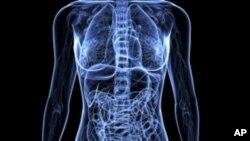 Дебата за вакцината против рак на грлото на матката