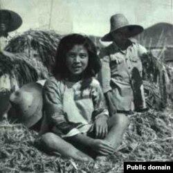 中国大跃进期间的照片显示人坐在密植的稻子上。当时各地竞相伪造粮食高产,种下大饥荒恶果。