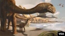 Perkiraan bentuk dinosaurus Angolatitan Adamastor, sebuah jenis saurapod raksasa.