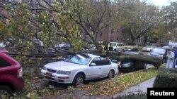 Mnogi građani mogli bi da pretrpe štetu od oborenog drveća