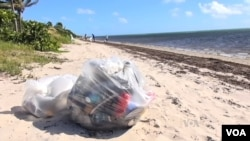 Garbage on the beach at Key Biscayne