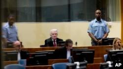Radovan Karadžić u sudnici Haškog tribunala (Foto: AP/Peter Dejong)