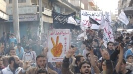 Manifestation anti-Assad le 30 novembre 2012 à Binsh