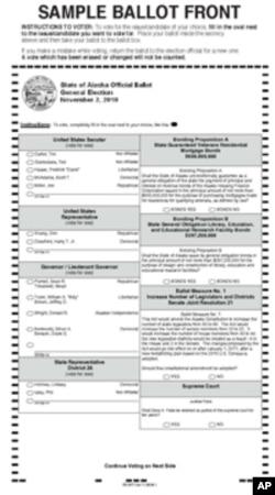 Write-in 选票样本