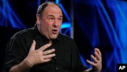James Gandolfini berbicara pada wartawan dalam sebuah acara yang diadakan oleh stasiun televisi HBO di Pasadena, California, pada 2011. (AP/Chris Pizzello)