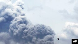 印尼的克卢德火山爆发,这是2月14日在东爪哇看到的情景