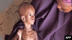 Сомали: дети умирают от голода, склады ломятся от продуктов