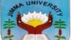 Barattootii yuniversitii Jimmaa,Kittoo Furdisaa akka yuniversitin isaanii barattoota Oromoo Jijjigaatti hin dachaane 1,000 fudhattu fedh