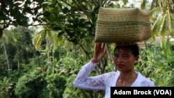 A Balinese woman in Ubud