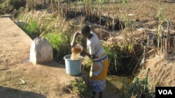 A woman gathers water in Malawi. A cholera outbreak that has hit the country is being linked to poor hygiene and untreated water. (L. Masina/VOA)
