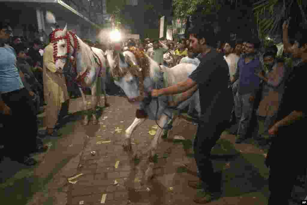 """""""Müsəlman Liqası"""" partiyası tərəfdarları parlament seçiklərindən sonra bayram şənlikləri zamanı"""