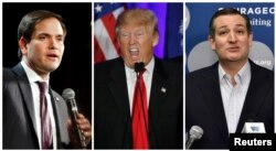 A combination photo shows U.S. Republican presidential candidates Marco Rubio (L) in North Las Vegas, Nevada on Feb. 21, 2016, Donald Trump in Spartanburg, South Carolina on Feb. 20, 2016 and Ted Cruz (R) in Las Vegas, Nevada on Feb. 22, 2016.