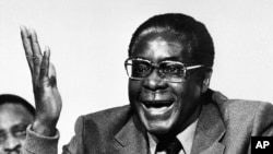 Zimbabwe's Robert Mugabe: Decades in Power