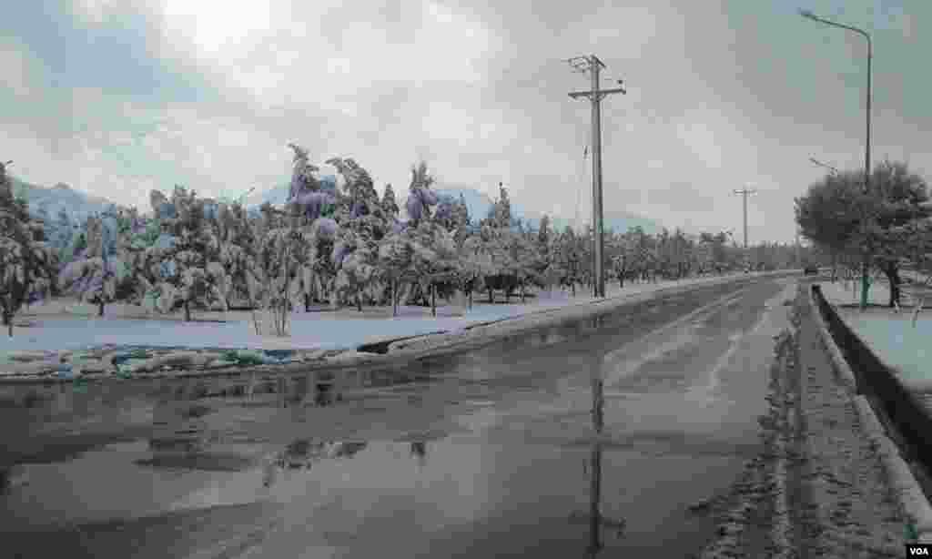 زمین های پوشیده از برف در فولادشهر اصفهان عکس: آرش (ارسالی شما)