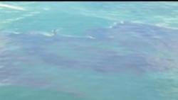 2012-03-03 美國之音視頻新聞: BP石油就墨西哥灣漏油訴案達成和解