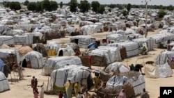 尼日利亚的一片因博科圣地和伊斯兰主义极端分子而流离失所的难民聚集地(资料照片)