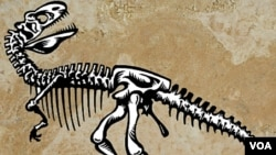 Los restos del dinosaurio fueron hallados en el Valle de la Luna, en la provincia argentina de San Juan.