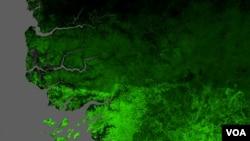 la Grande muraille verte (GMV), qui s'étend sur 535 km et dont les plantations ont commencé en 2008, est un projet panafricain, est destinée à stopper la désertification en Afrique.