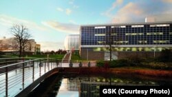 Galvani Bioelectronics will be headquartered within GSK's global R&D center at Stevenage in the UK.